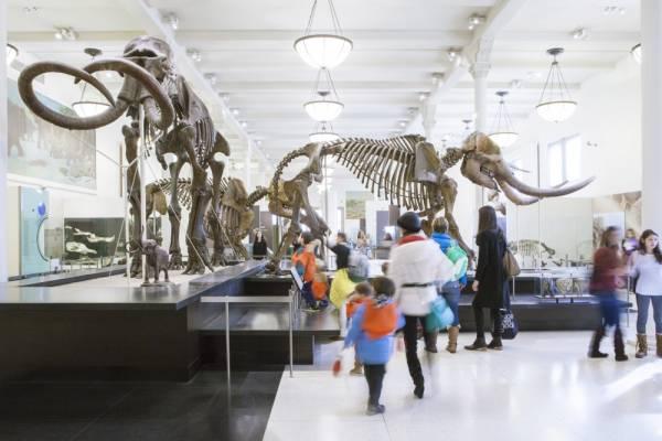 8 MUSEOS PARA NIÑOS EN NUEVA YORK